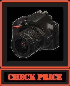 Nikon D3500 W/ AF-P DX NIKKOR Camera
