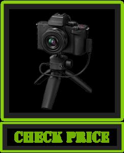 Panasonic LUMIX G100 Vlogging Camera