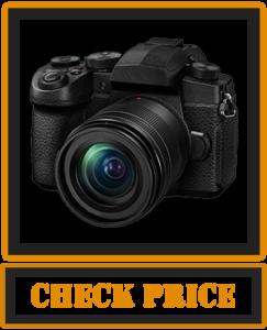 Panasonic LUMIX G95MK Mirrorless Camera